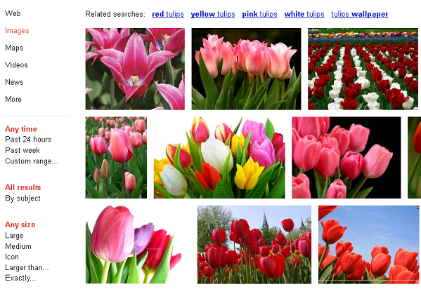 Google Image search old version